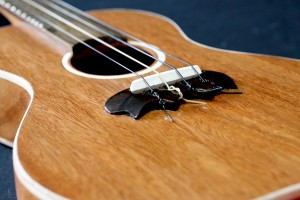 Ukulele Closeup of Bridge | Dale Wallace Guitars
